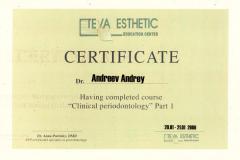 Сертификат 12